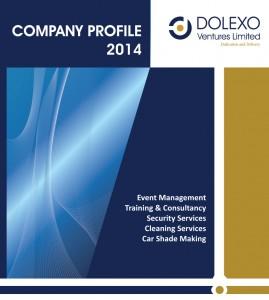 DVL-Company-Profile